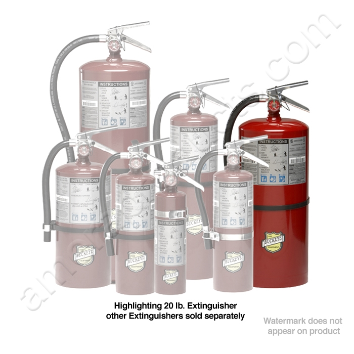 Buckeye 12120 20 Lb Fire Extinguisher Ec 12120