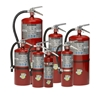 Buckeye 11340 10 lb Tall Fire Extinguisher