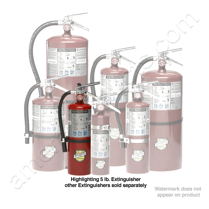 how to do hand lettering buckeye 10914 5 lb extinguisher ec 10914 10914 | ABCGroup5lb