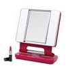 OttLite B922W3 Natural Makeup Mirror - Pink Floral